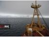 antartic-copia